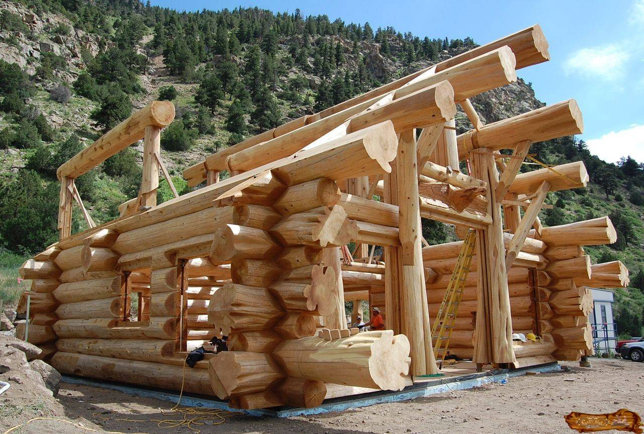 Дерево в строительстве и проектировке бань