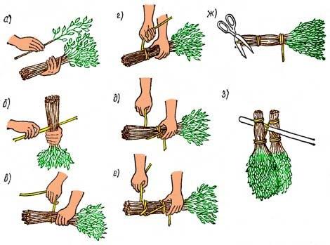 Как делать березовые веники для бани - когда заготовлять, как запарить, советы