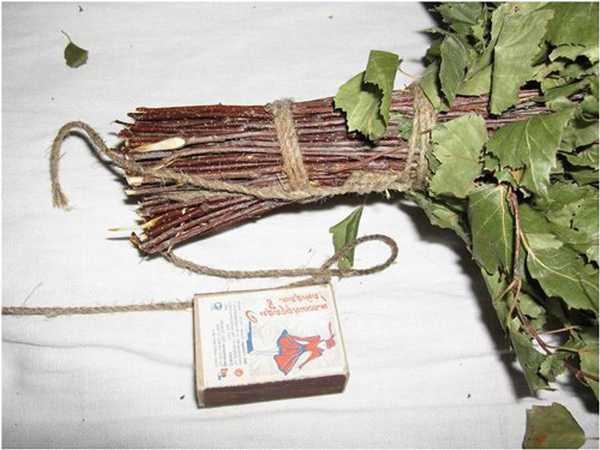 Заготавливаем веники для бани: березовые, дубовые, крапивные, липовые, хвойные, правила вязки веника