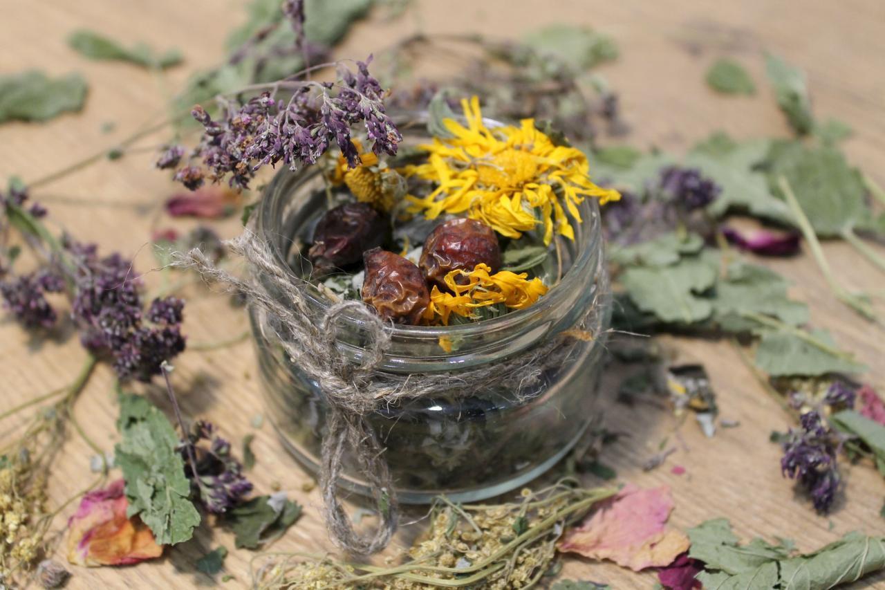 Травы для бани: как заваривать и полезные свойства