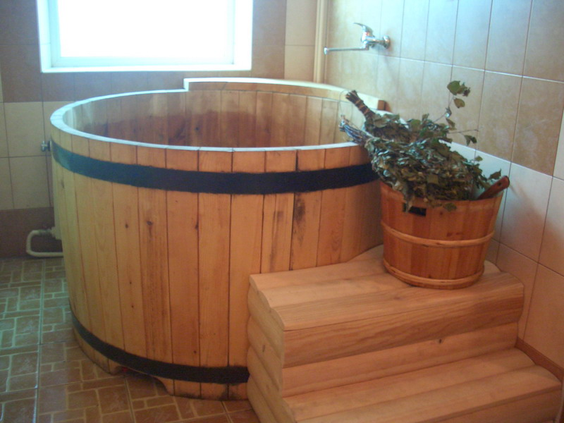 Баня с бассейном внутри: проект, планировка, особенности строительства