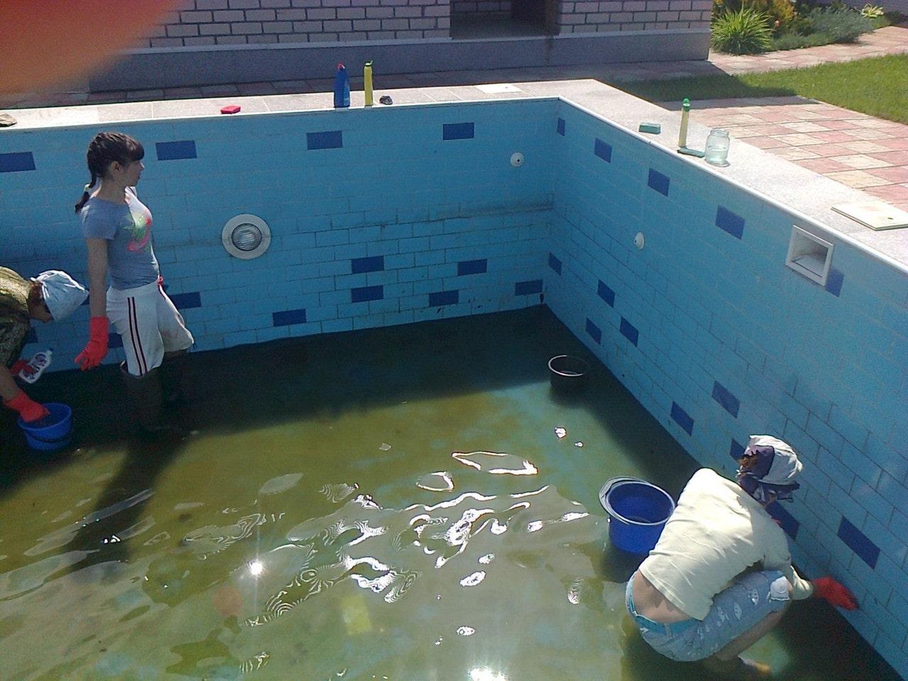 Способы очистки бассейнов на даче