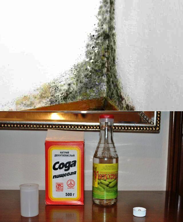 Чем обработать пол в бане, стены в парилке, моечной и предбаннике в зависимости от отделки