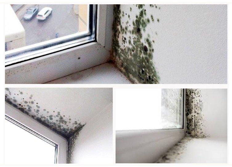 Почему текут пластиковые окна в квартире и что делать?