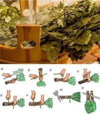Когда заготавливать дубовые веники для бани | строительство. деревянные и др. материалы