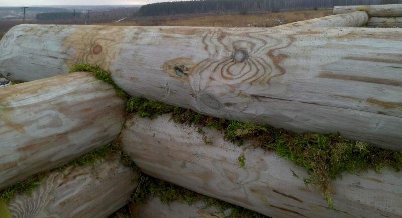 Межвенцовый уплотнитель - мох