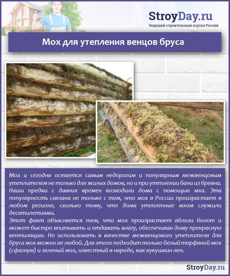 Как выбрать правильный мох при строительстве сруба дома или бани?