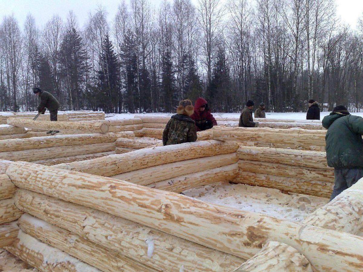 Строительство каркасного дома зимой: плюсы и минусы