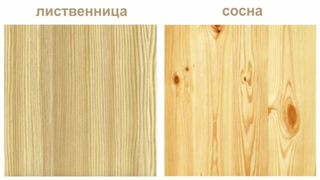 Баня из березы: плюсы и минусы, отзывы тех, кто имел дело с этой древесиной