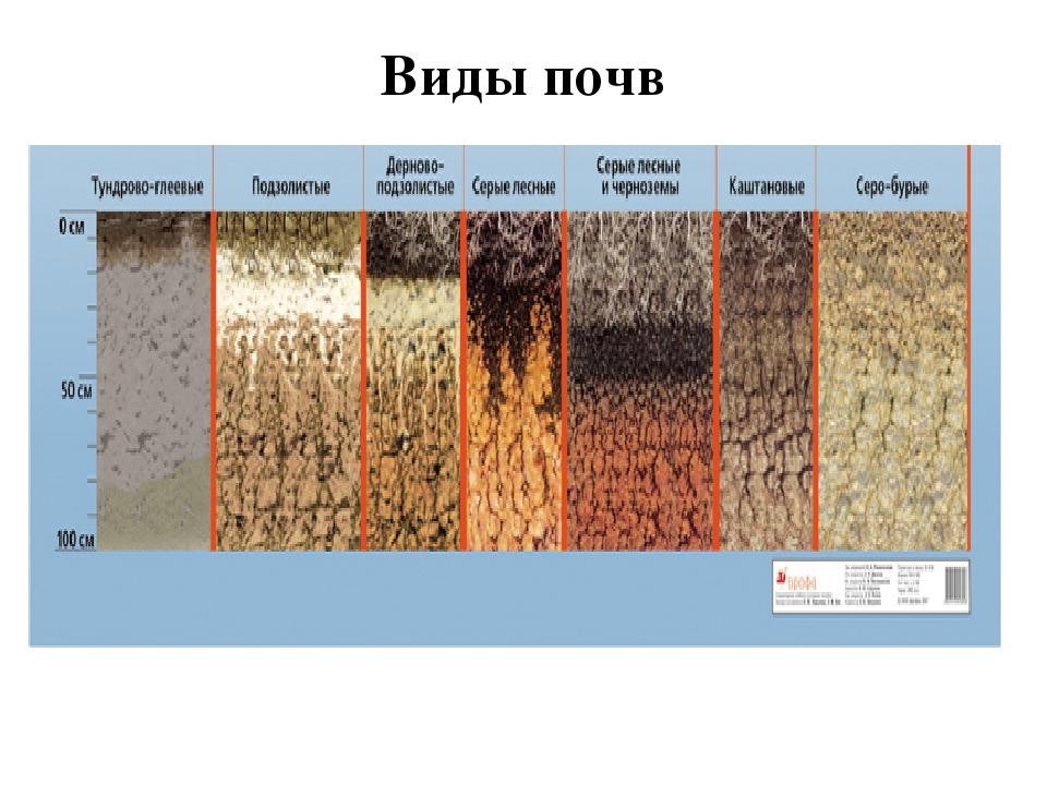 Грунт и фундамент. виды и характеристики