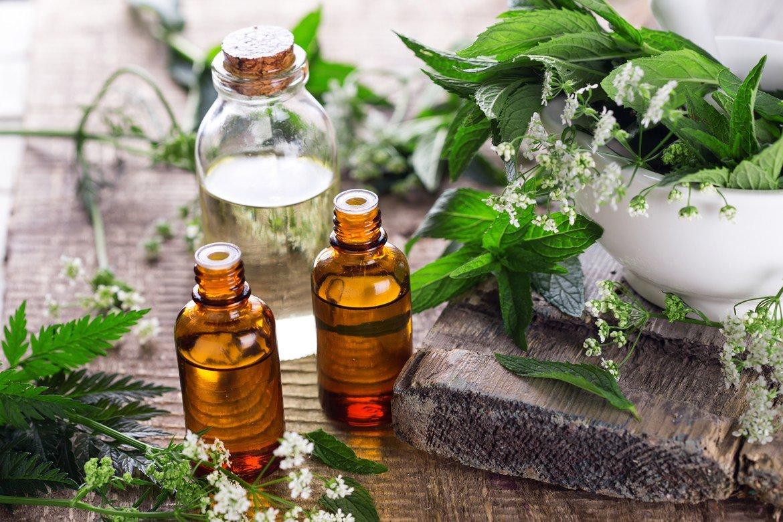 Травы для бани: лечение с удовольствием