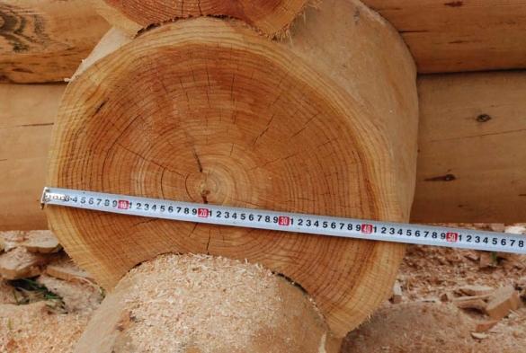 Из какого дерева лучше строить баню сравниваем из какого дерева лучше строить баню сравниваем