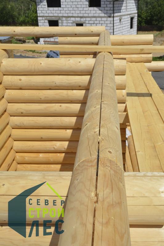 Из какого леса выбрать сруб бани из бревна: под усадку из северного леса, дикий, из кедра или лиственницы, какой лучше построить сруб бани из рубленного бревна своими руками