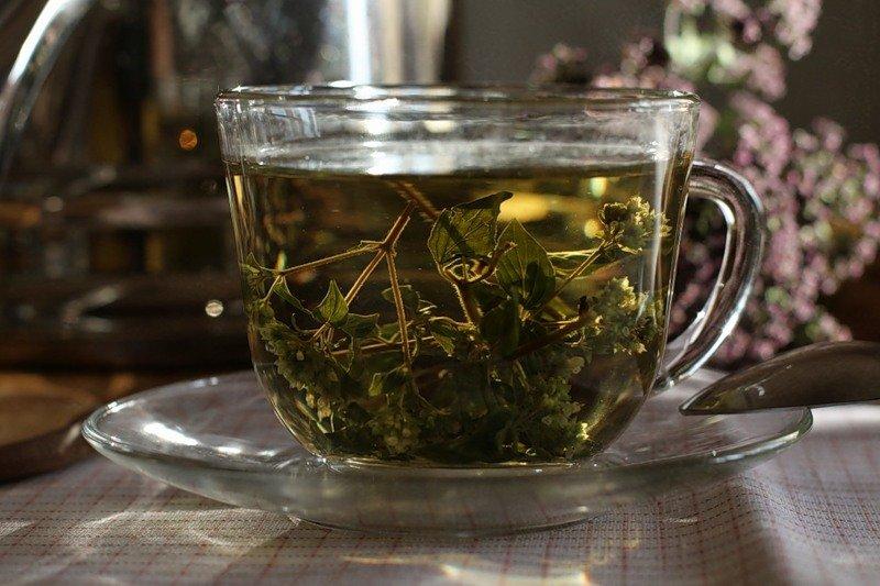 Рецепты чая для бани. какой чай лучше взять в сауну?