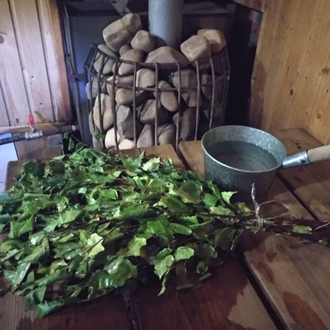 Когда заготавливают березовые веники для бани: сроки, где лучше собирать, как вязать, правила заготовки и хранения