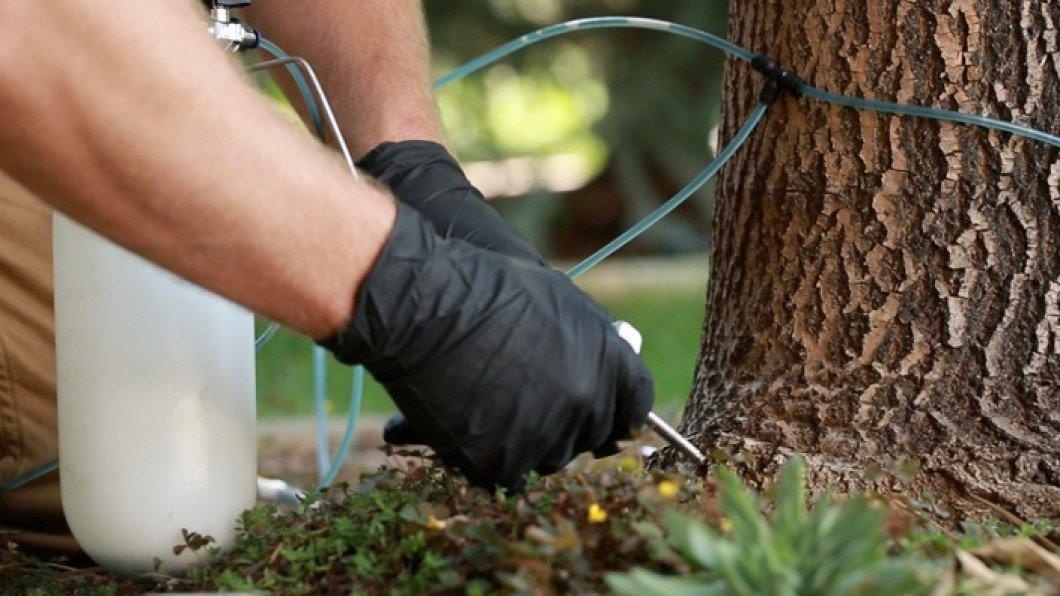 Пропитка для дерева от влаги и гниения: какая лучше, выбор средств для работ снаружи и внутри