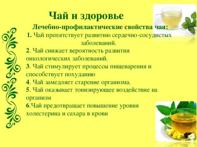 Кедровая бочка польза для здоровья   медик03