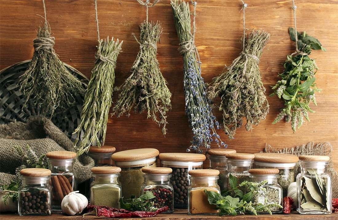 Травы для бани – целебный пар для вашего здоровья. применение