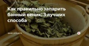 Как правильно запарить дубовый веник: верные рецепты от заядлых банщиков