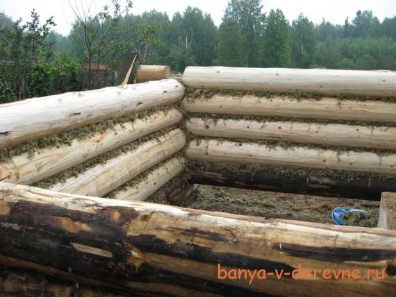 Баня из бревна своими руками: пошаговая инструкция