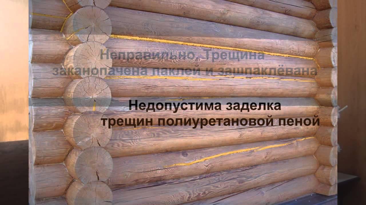 Заделка щелей и трещин в бревнах готового сруба: способы устранения