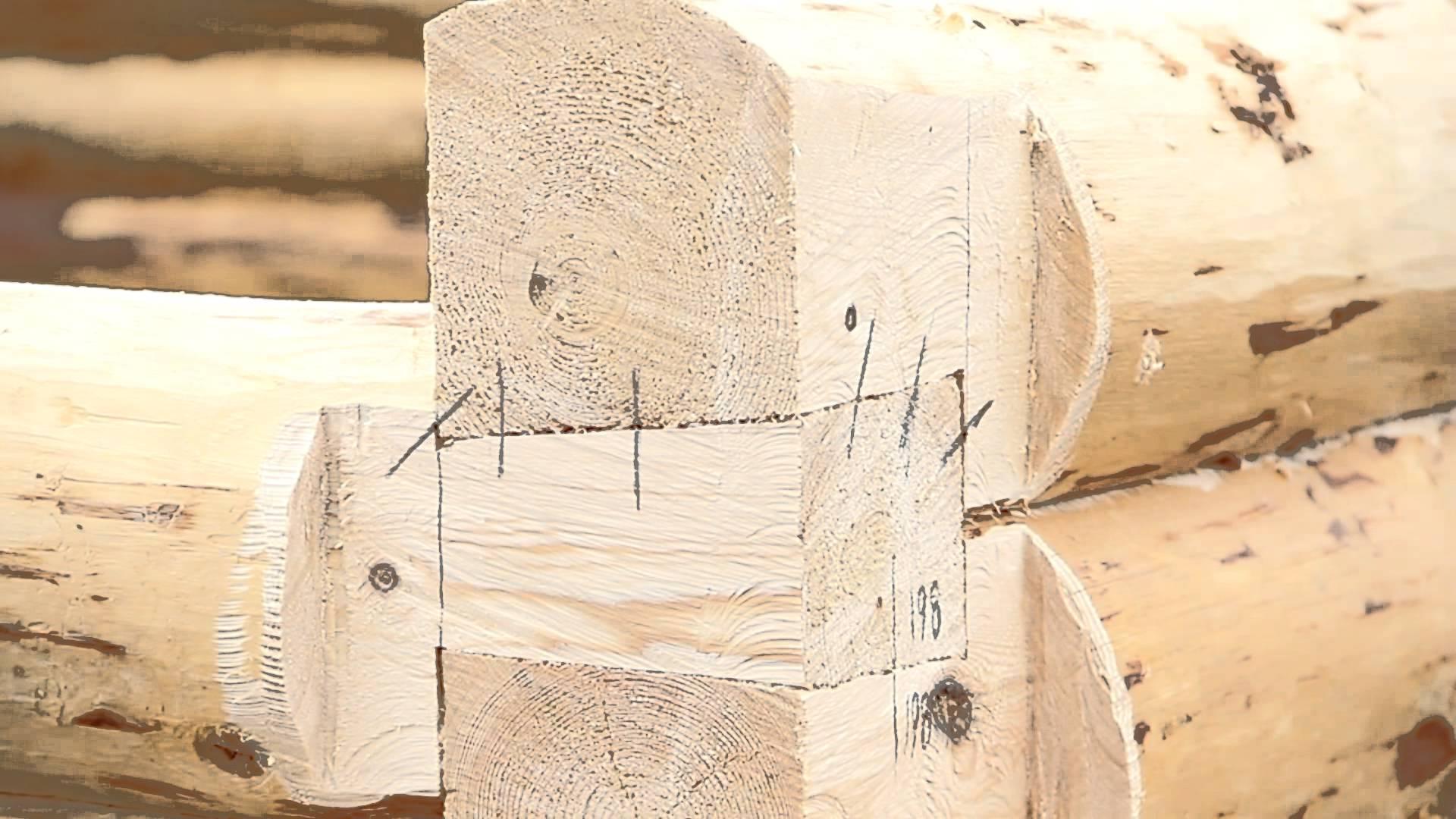 Как срубить баню своими руками: расчёт материала, как рубить, пошаговая инструкция по возведению, фото