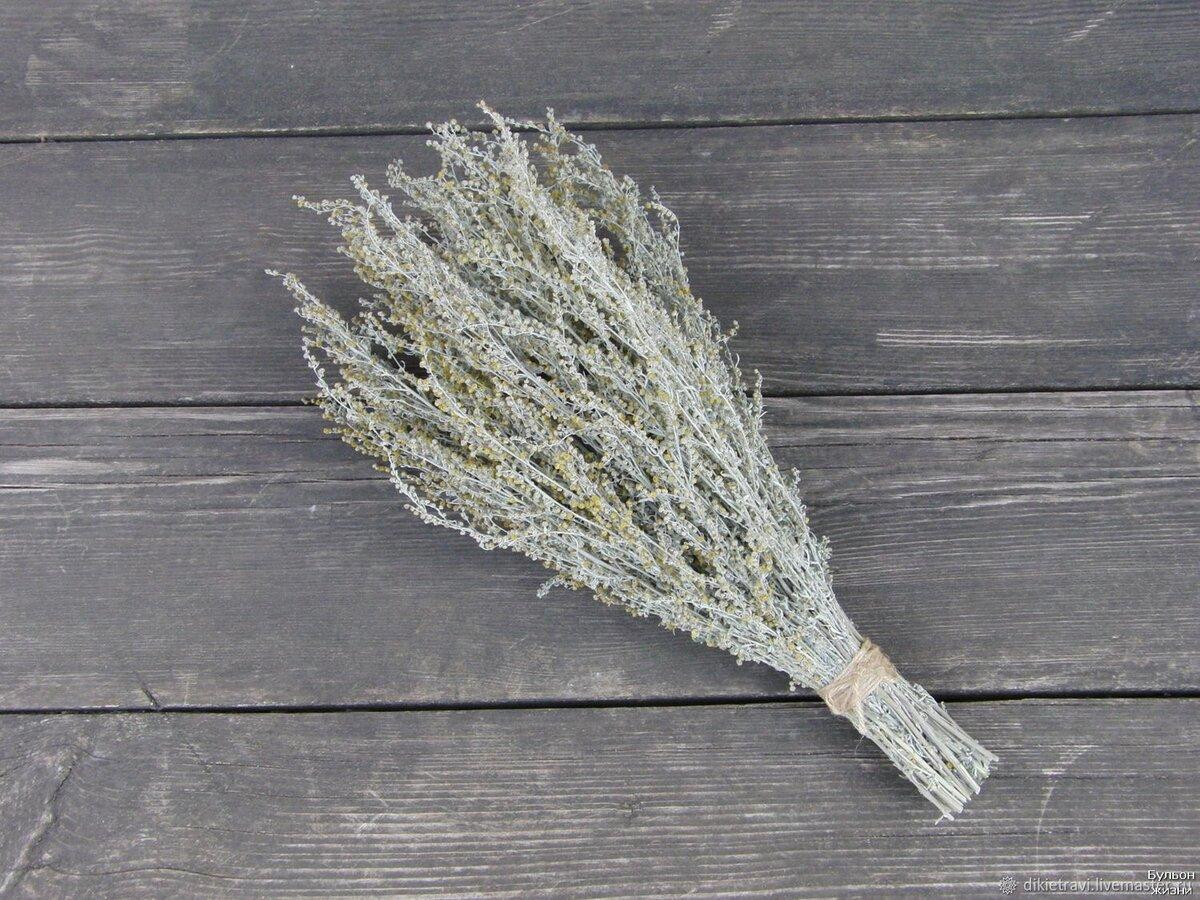 Веник из полыни для бани польза и вред - польза или вред