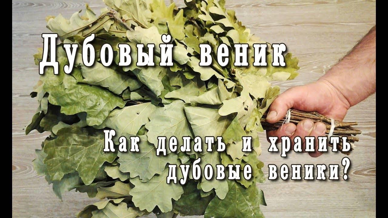 Как правильно вязать веники для бани? рекомендации опытных банщиков :: syl.ru