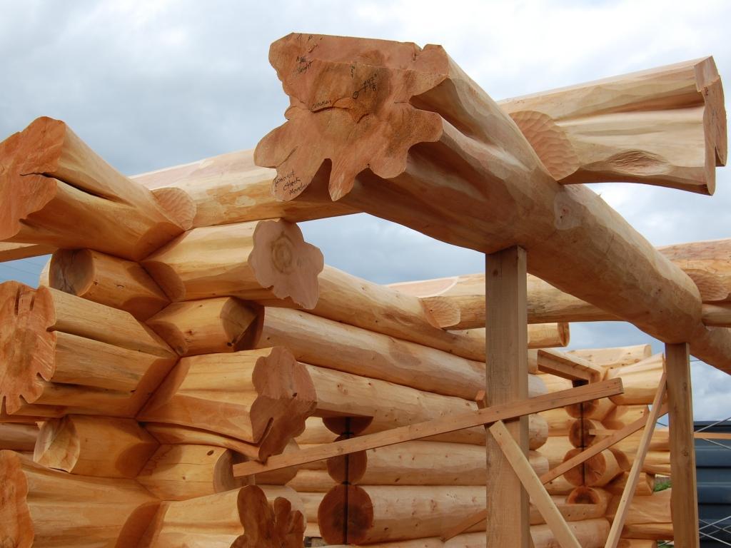 Какое дерево лучше для бани – из чего лучше строить баню и выполнять отделку