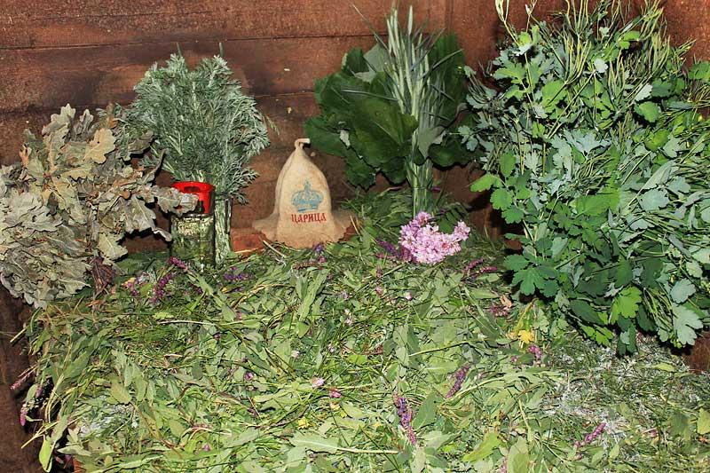 Душистые и целебные травы для бани. Секреты применения и их бесценные свойства!