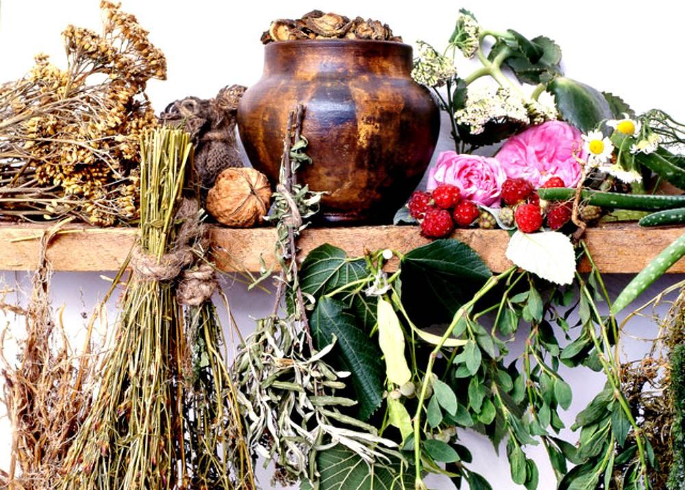 Травы для бани в пучках, сбор трав для бани