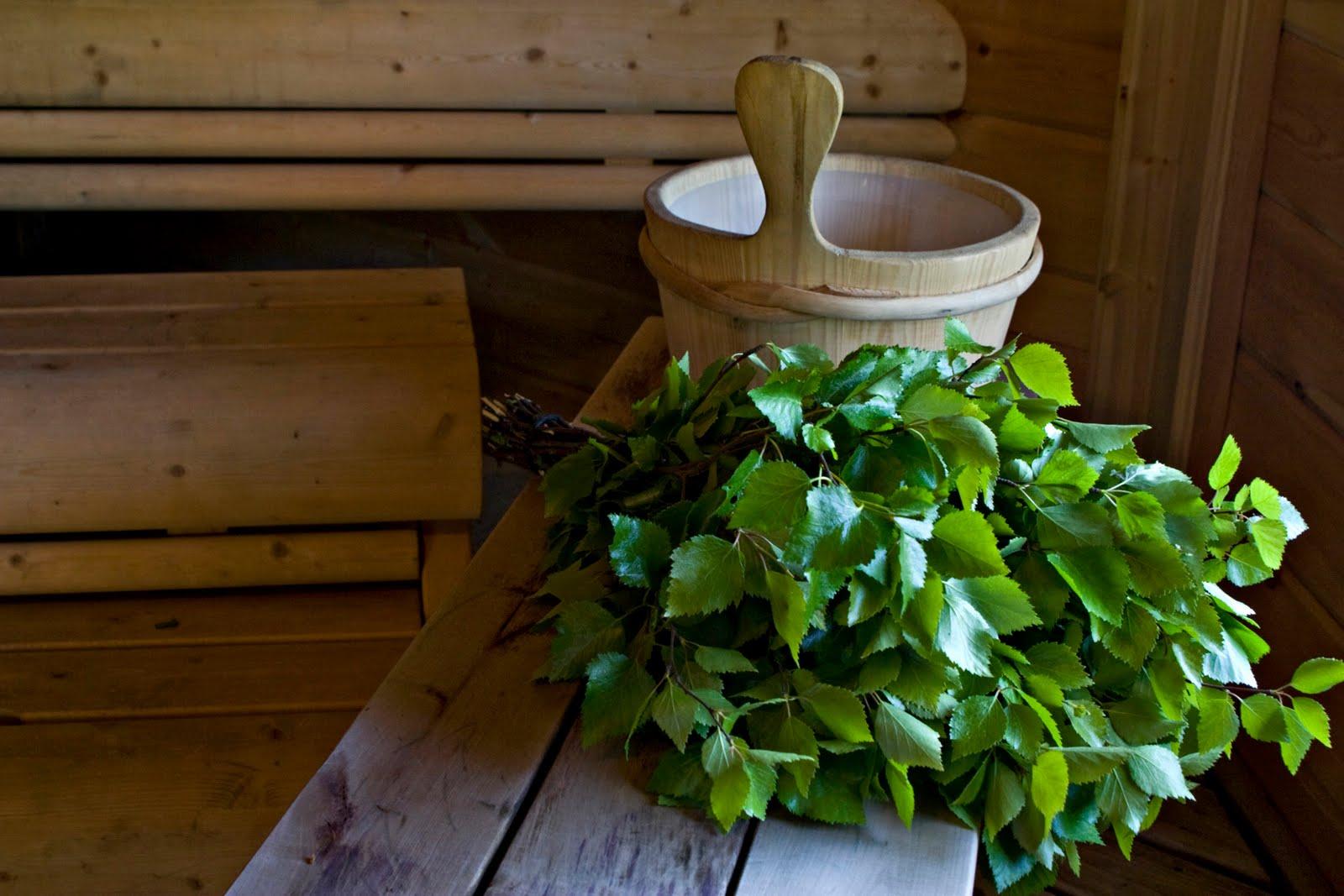 Какие бывают веники для бани? виды и особенности   построить баню ру
