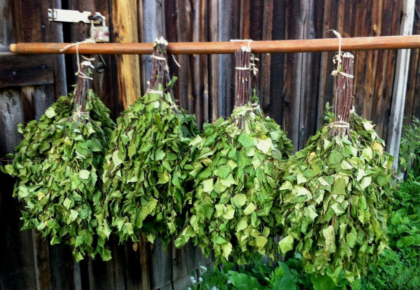 Бизнес идея для села: изготовление, заготовка и продажа веников для бани