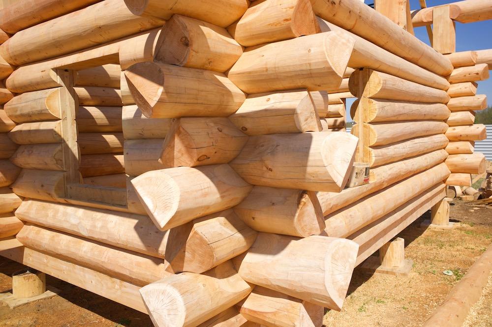Дерево для бани: из какого лучше строить