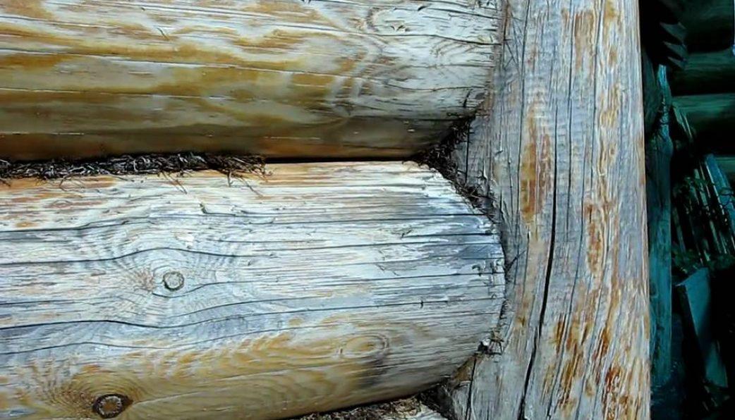 Обработка деревянного дома снаружи: средства и технология