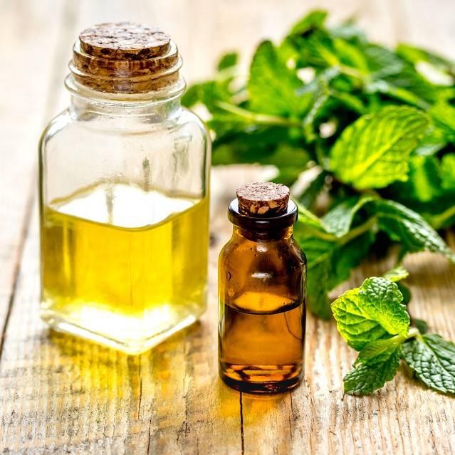 Как сделать ароматный и приятный запах в бане: эфирные масла, травяные настои и ароматизаторы