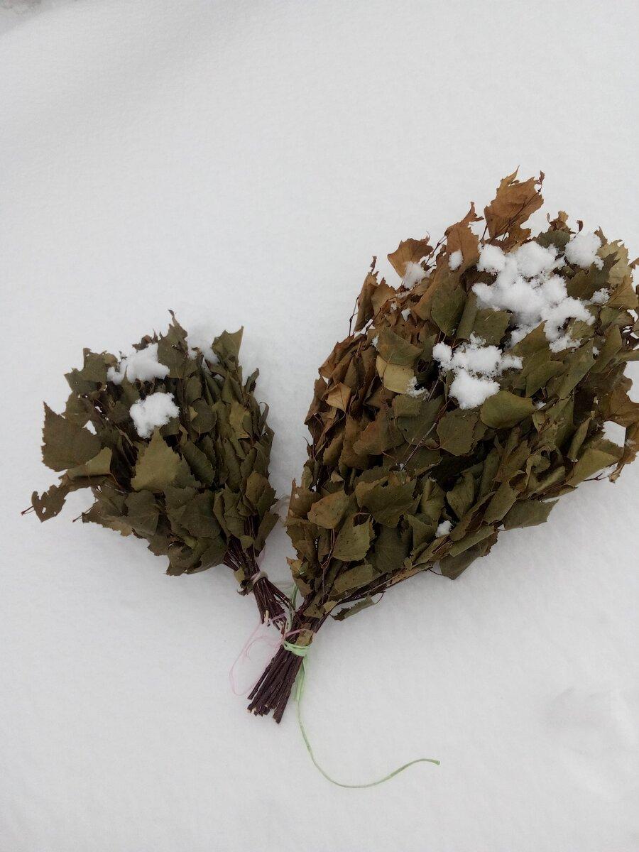 Чем полезен березовый веник для бани | дары природы.су