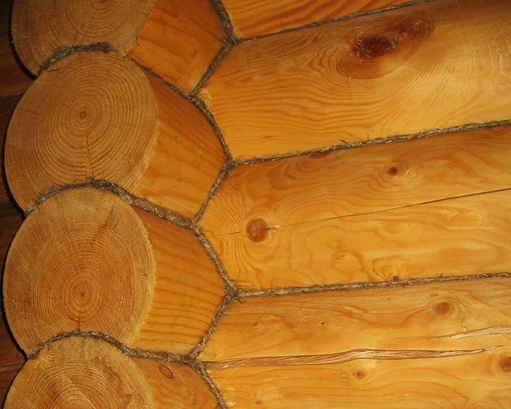 Трещины в бревнах (брусьях) сруба: способы профилактики и заделки древесных дефектов