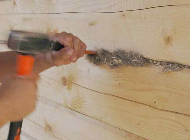 Как заделывать щели в брёвнах: причины появления, материалы для заделки трещин в брёвнах сруба, советы