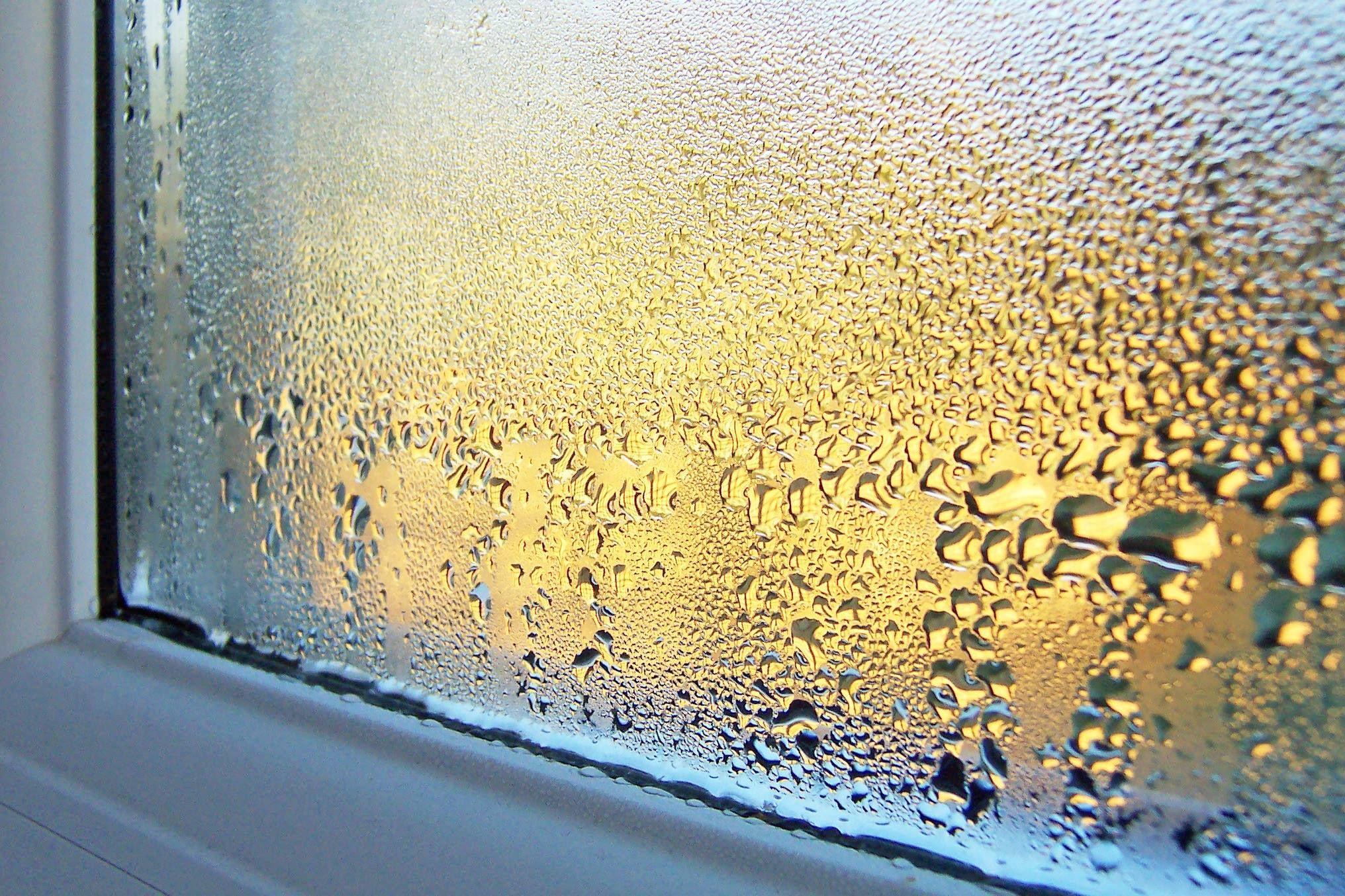 Конденсат на окнах внутри квартиры: почему образуется и как избавиться