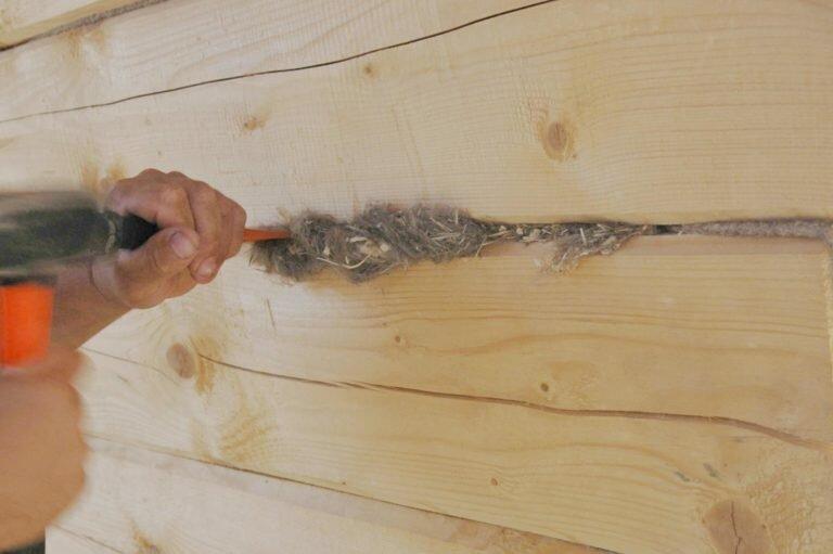 Как правильно конопатить баню сруб из бруса: мхом, джутом или паклей + видео