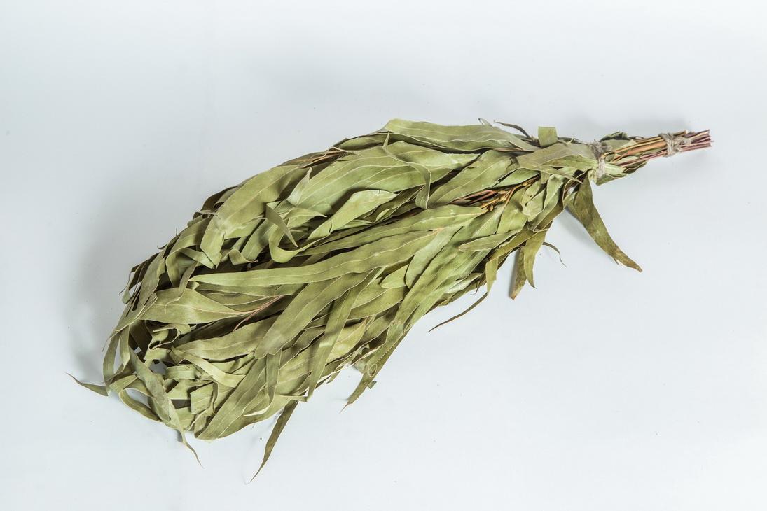 Польза эвкалиптового веника для бани