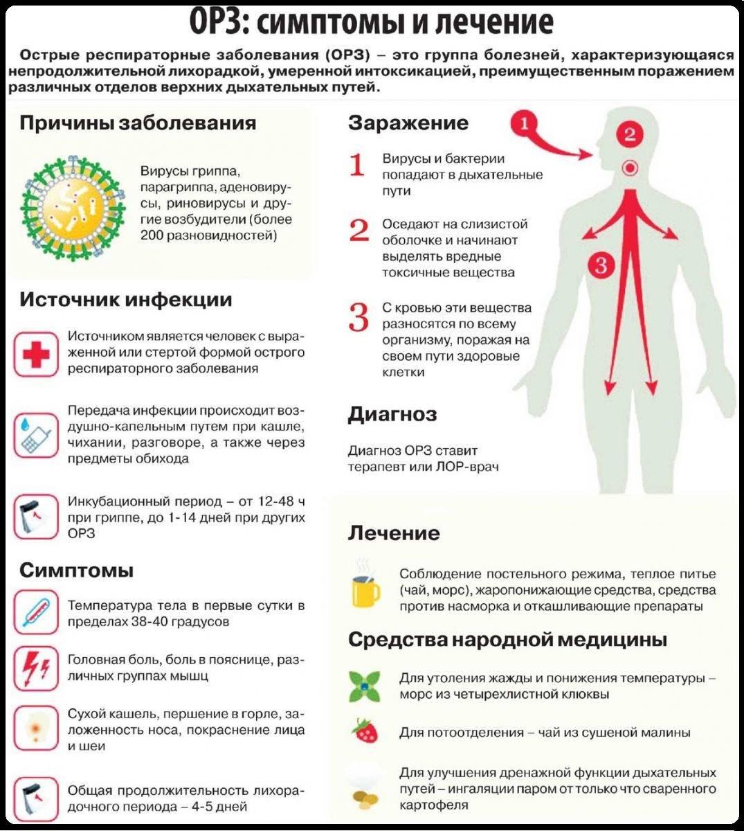 Баня при простуде: как правильно лечиться от орз