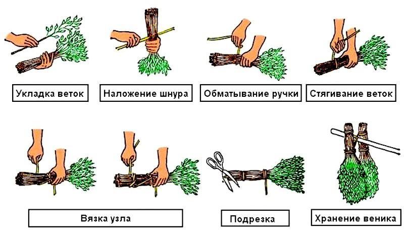 Как вязать веники для бани из березы