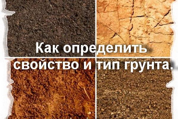 Анализ грунта перед строительством: как провести его своими силами