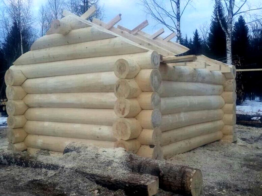 Из чего лучше строить баню из осины или сосны?   в чем разница