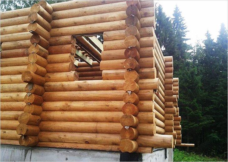 Когда строить баню: от выбора материалов до этапов строительства
