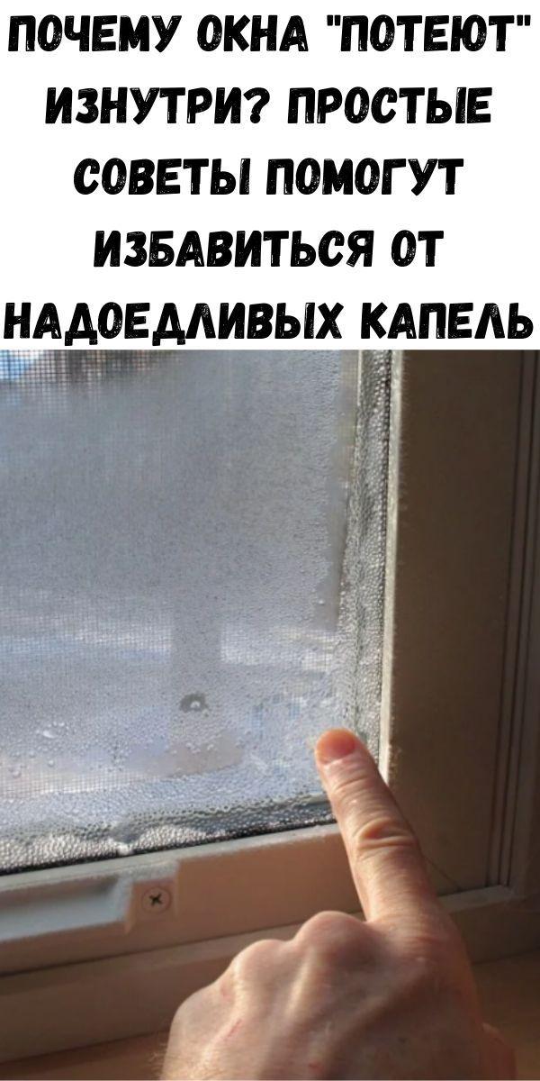 Потеют окна – причины и способы решения проблемы - энергосовет.ru