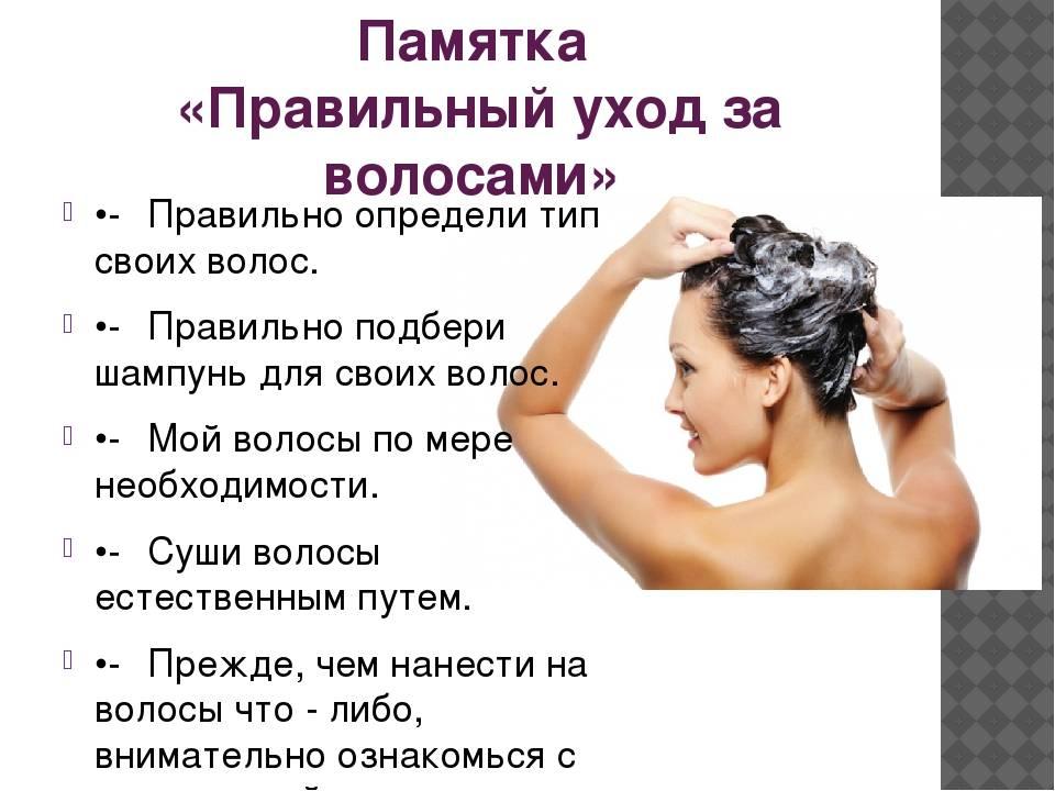 Уход за осветленными волосами в домашних условиях - лучшие советы профессионалов для обладательниц цвета блонд