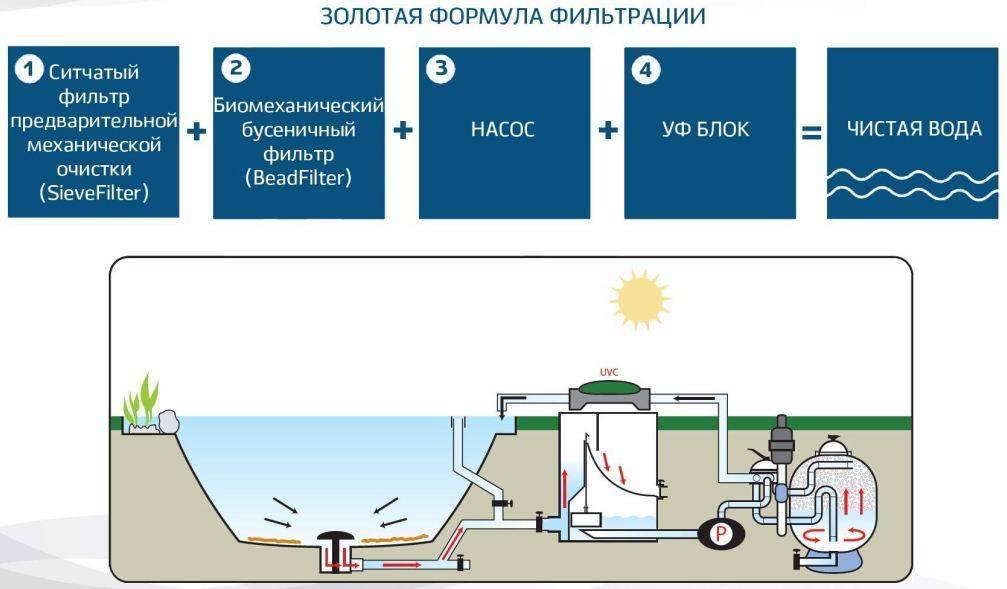 Очистка бассейна: способы ухода, обзор лучших пылесосов, правила использования